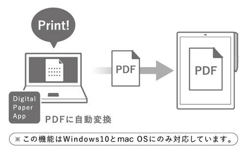 y_DPT-RP1_005