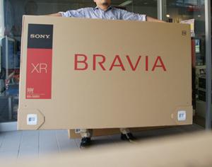 20081004bravia2.jpg
