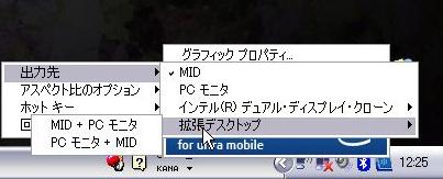 20090121vga5.jpg