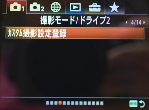 DSC09461
