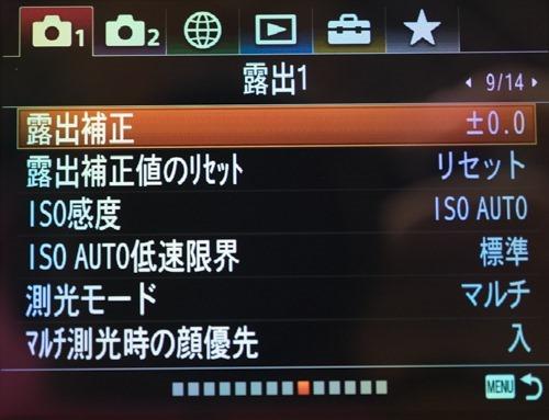 DSC09466