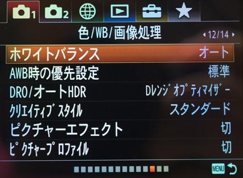 DSC09469