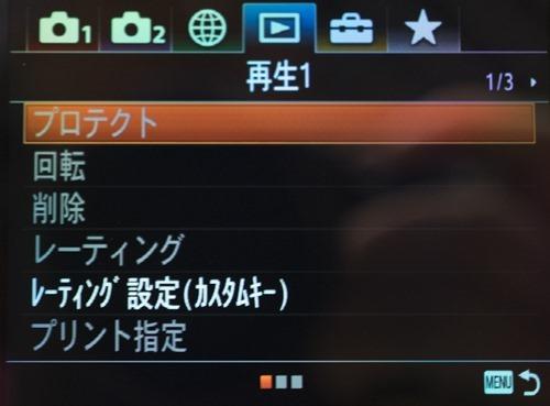 DSC09483