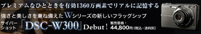 banner_w300.jpg