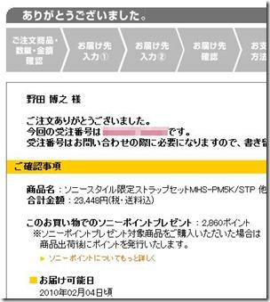 20100129bloggie001