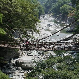 徳島県人ですが夏のかずら橋行ってきました