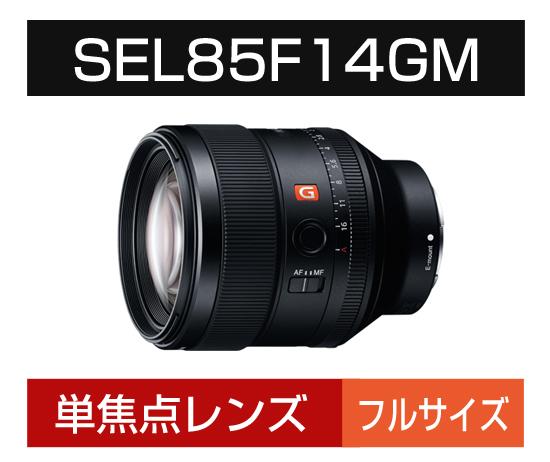 Eマウント用 SEL85F14GM