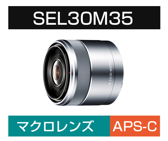 Eマウント用(マクロ) SEL30M35