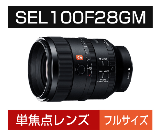 Eマウント用 SEL100F28GM
