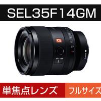 SEL35F14GM