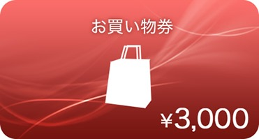 action_cam_coupon