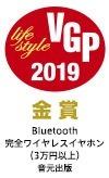 vgp2019_logo_WF-SP900