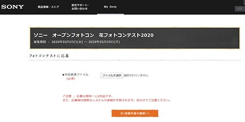 SnapCrab_NoName_2020-4-3_17-16-36_No-00