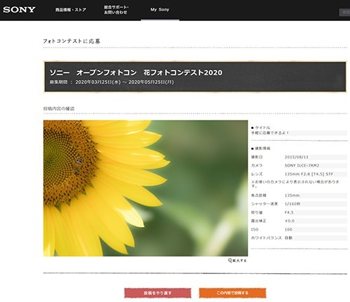 SnapCrab_NoName_2020-4-3_17-18-59_No-00