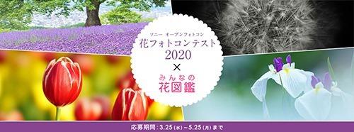 SnapCrab_NoName_2020-4-3_17-9-23_No-00