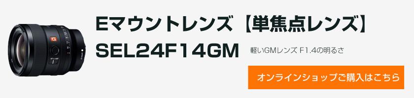 SEL24F14GM(FE 24mm F1.4 GM)、50mmと55mmレンズを、最大撮影倍率比較してみた。